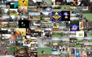 Annes Collage Kenia project